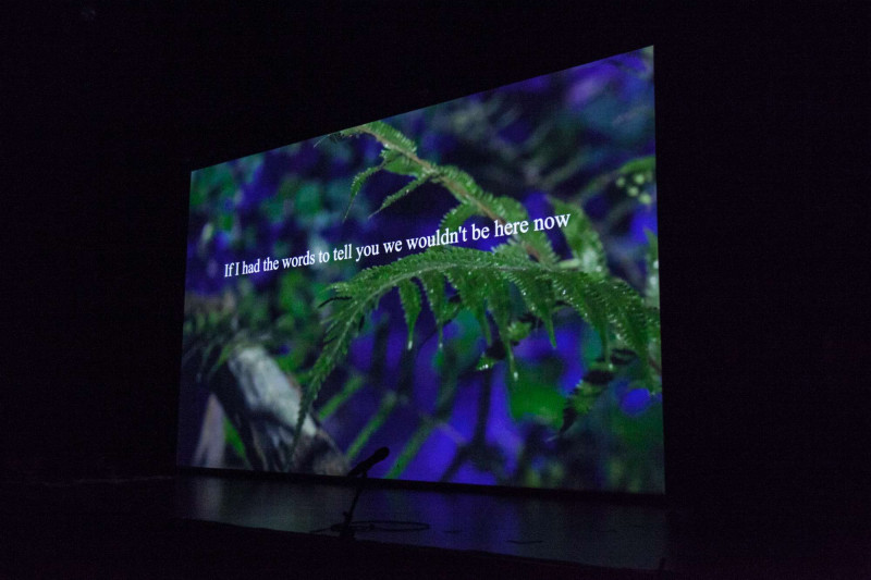 Mal Journal - Plantsex at Serpentine gallery - If I had the words to tell you we wouldn't be here now
